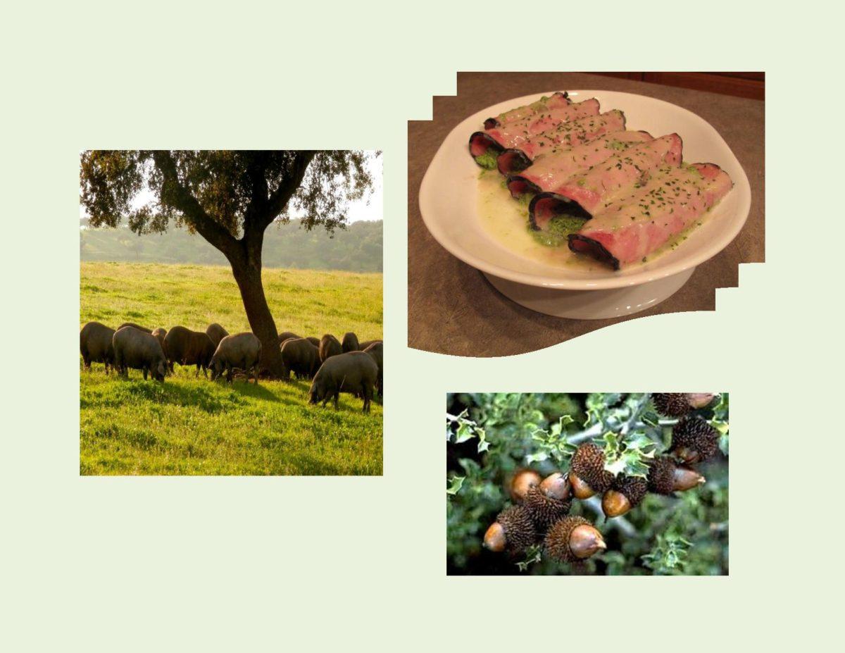 Ham & Spinach Rolls