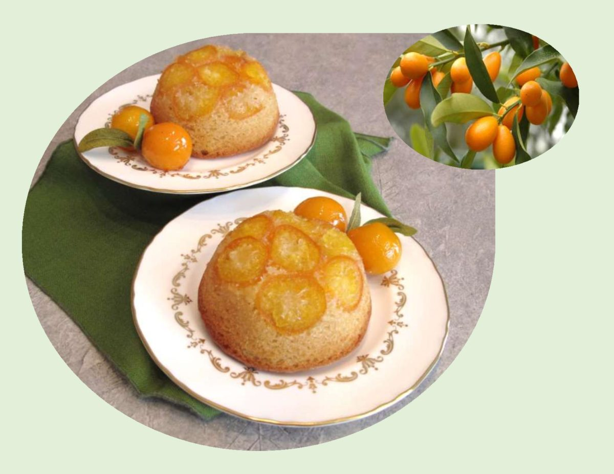 Kumquat Ginger Cakes